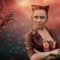 кошка - после :: Olga Gerdo