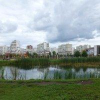 Озеро на Меридианной :: Наиля