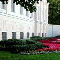 Цветы на Невском проспекте.Аничков дворец. Автор фотографии   Натан. :: Фотогруппа Весна.