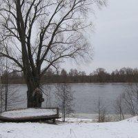 В ожидании весны :: Николай Котко