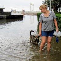 Наводнение в Сухуми :: ФотоЛюбка *