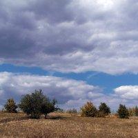 пейзаж2 :: александр горшков