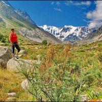 В горах Кавказа. :: Ирина Нафаня