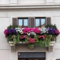 Балкончик :: Savayr