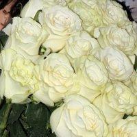 Букет из белых роз :: Людмила