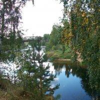 На берегу. Река Оредеж. :: Виктор Елисеев