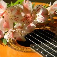 с гитарой :: Ekaterina K