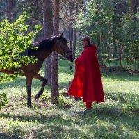 Всадник в лесу :: Аркадий Русанов