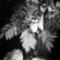 Натюрморт с белыми грибами. :: Лазарева Оксана
