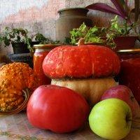 Дачный урожай :: Marina Timoveewa