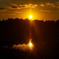 Вечер на реке Тосна :: Денис Матвеев