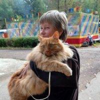 Дама с котом (Рыжий фестиваль) :: muh5257