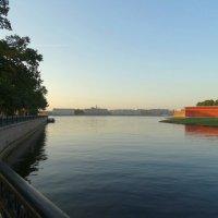 Кронверкский пролив и Нева :: Владимир Гилясев