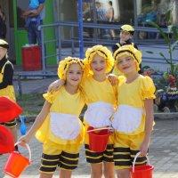 Дружные пчелки! :: A. SMIRNOV