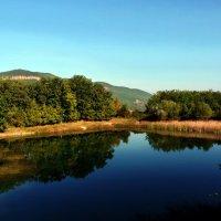 Лесное озеро :: Ольга Голубева