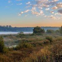 Утром :: Юрий Стародубцев
