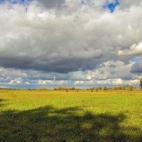Уж небо осенью дышало... :: Александр Брикс
