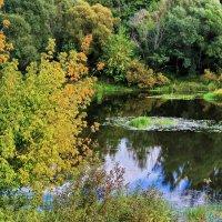 Листвой осенней не согреть... :: Лесо-Вед (Баранов)