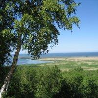 Вид на Финский залив г. Кунда :: laana laadas