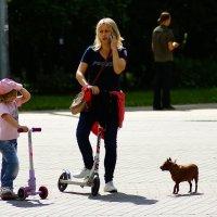 - Дайте собачке скейт! :: Igor Khmelev