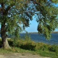Волга в сентябре. :: Анатолий