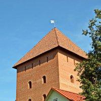 Рыцарский замок, г.Лида :: Сергей F
