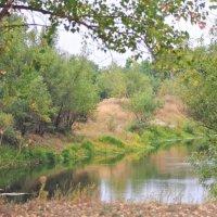 Вот и осень... :: Viktor Eremenko