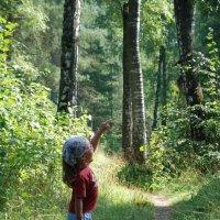 в лесу :: Марина Баукина