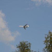 Только в полётах живут самолёты. :: Oleg4618 Шутченко
