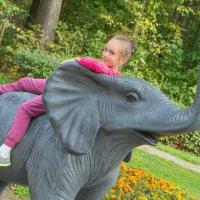 на слоне :: Екатерина Рябцева