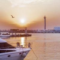 Закат в морском порту :: Максим Андреев
