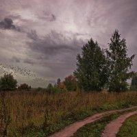 Уж, небо осенью дышало... :: Владимир Макаров
