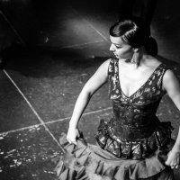 танцовщица фламенко :: Vasiliy V. Rechevskiy