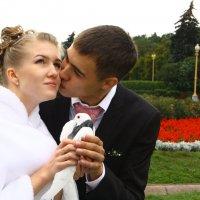 Поцелуй :: Олег88 Куб
