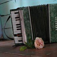 старый добрый аккордеон :: Наталья Бридигина