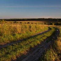 Манящая дорога.... :: Sergey Apinis