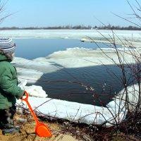 Куда уплывают льдины? :: Валентина Илларионова (Блохина)