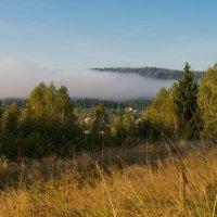 Над туманом. :: Александр Потапов