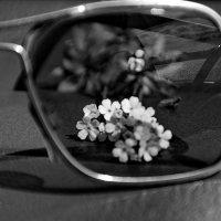 За стеклом... :: Татьяна Аистова