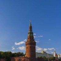 Вид на Кремль :: Сергей Sahoganin