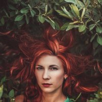 Lilia Garden :: Мария Айно