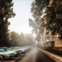 Утренний туман :: Елена Черненко