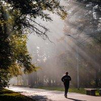 Утренняя пробежка.. :: Дмитрий Багмет