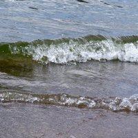 Катятся волны :: leoligra