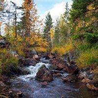 Осень :: Игорь Чубаров