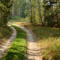 уходит дорога на лево :: Константин Смирнов