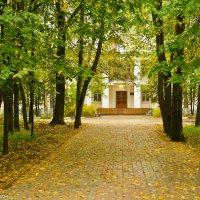 Осенняя аллея. :: Виктор Евстратов
