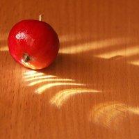 Эх, яблочко... :: muh5257