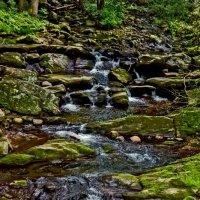 Водопад Кент :: Ольга Маркова