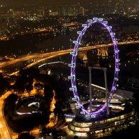 FLY SINGAPORE :: Savayr